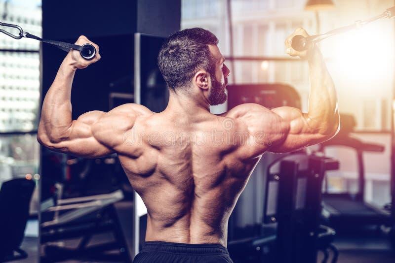 Treinamento atlético da dieta do homem do poder considerável que bombeia acima o músculo traseiro fotografia de stock