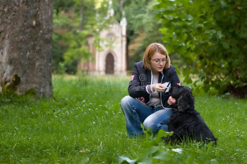 Treinamento da menina seu cão fotos de stock
