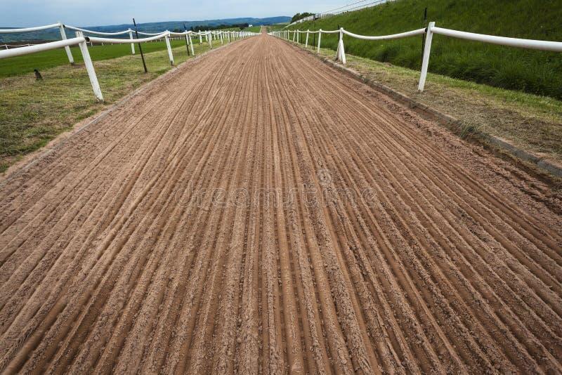 Treinamento da trilha da areia do cavalo   fotos de stock