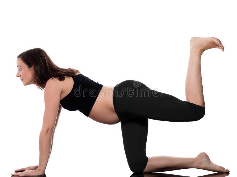 Treinamento do exercício da mulher gravida imagem de stock royalty free