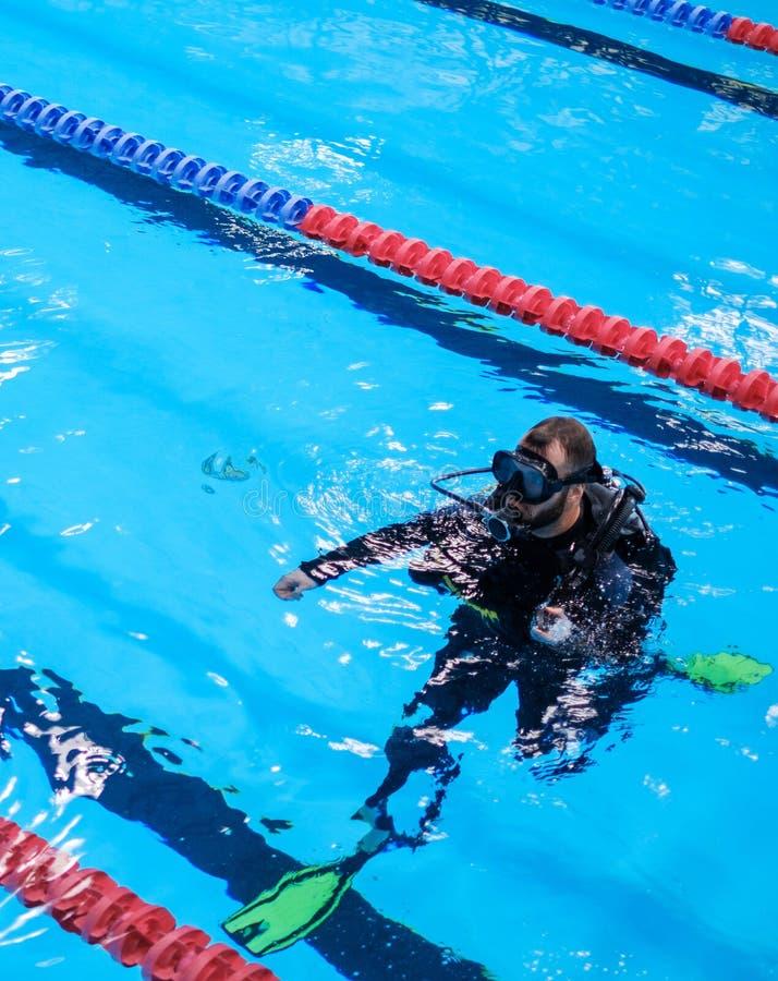Treinamento do homem do mergulhador de mergulhador em uma piscina imagem de stock royalty free