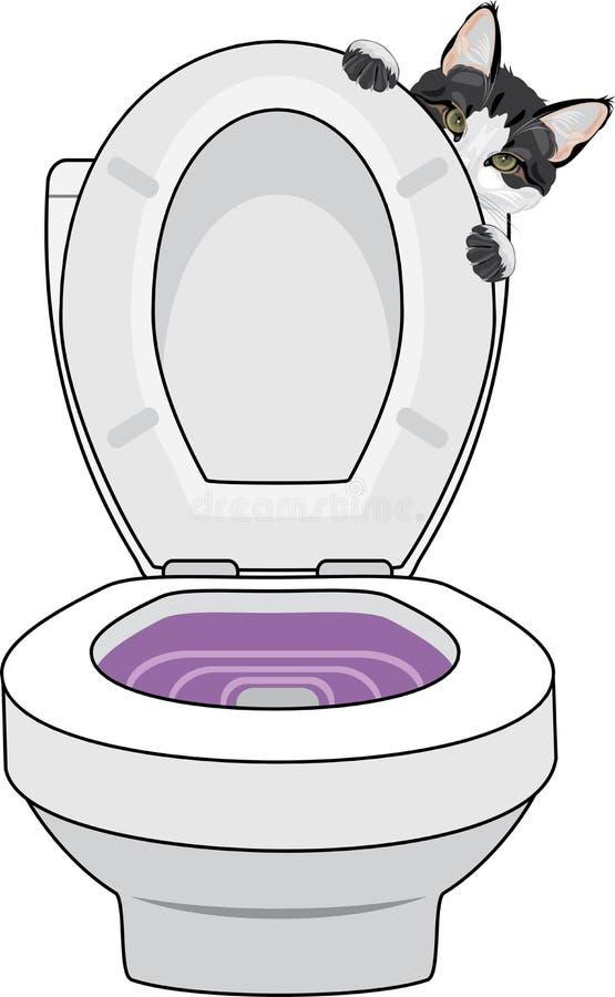 Treinamento do toalete do gato ilustração royalty free