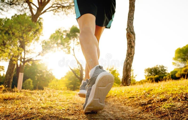 Treinamento forte do corredor na trilha rural que movimenta-se no por do sol na natureza no corta-mato e nos esportes foto de stock royalty free
