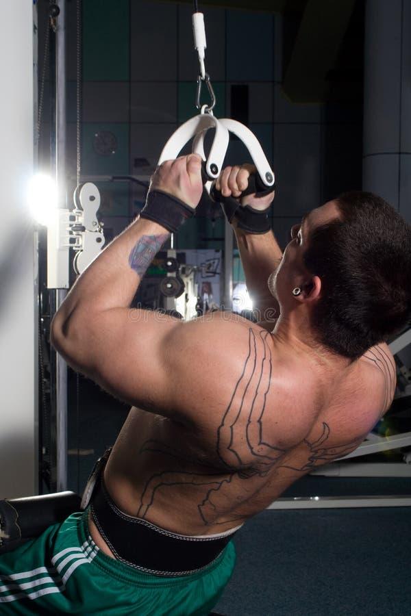 Treinamento novo do bodybuilder imagem de stock
