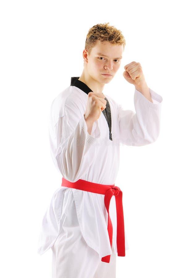 Treinamento taekwondo do homem imagem de stock
