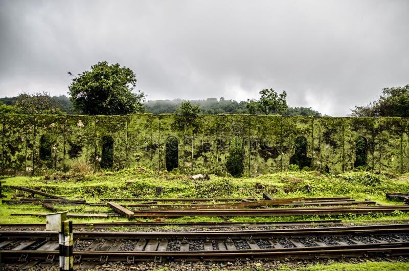 Treinfotografie tijdens moesson royalty-vrije stock fotografie