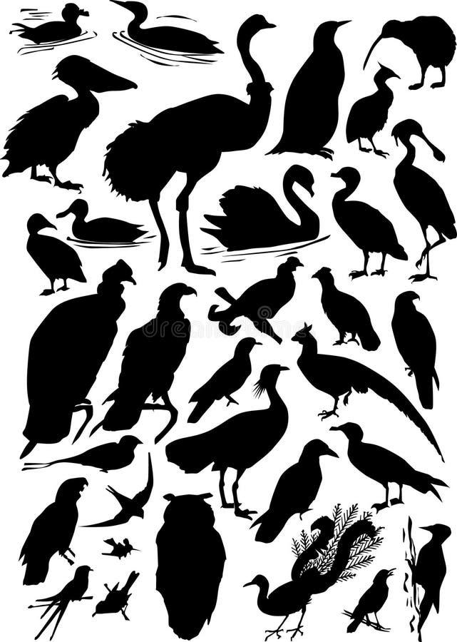 Treinta siluetas de un pájaro ilustración del vector