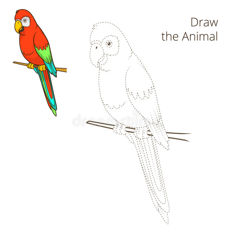 Trek de dierlijke vector van het papegaai onderwijsspel royalty-vrije illustratie