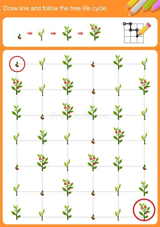 Trek lijn en volg de cyclus van het boomleven stock illustratie