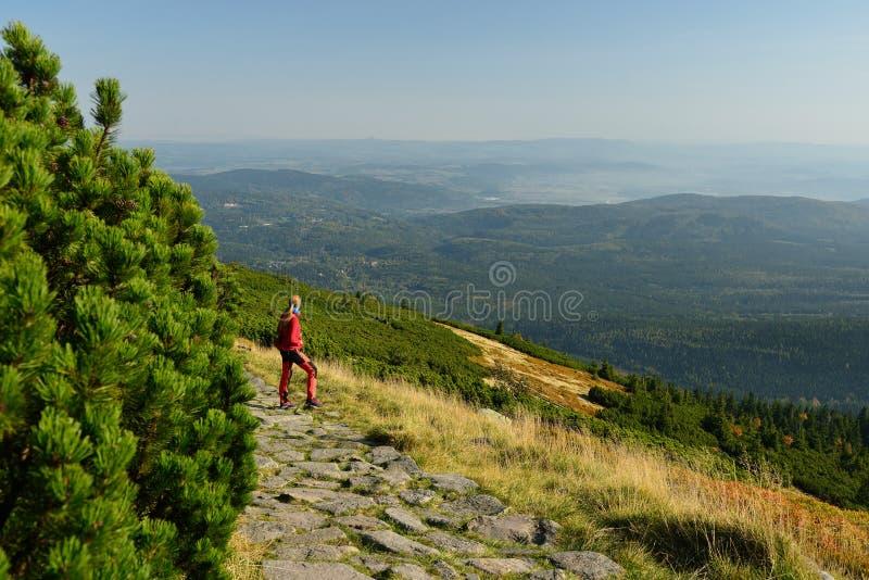 Treking в национальном парке горы Karkonosze с рюкзаком в Польше стоковые изображения rf