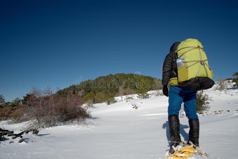 Trekker с рюкзаком идя в снег с Snowshoes стоковая фотография rf