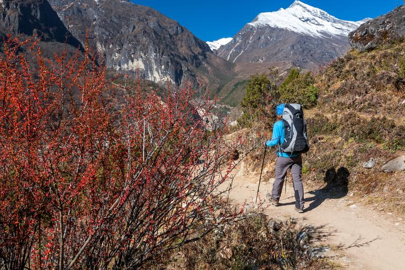 Trekker που πλησιάζει το πέρασμα Λα Renjo σε έναν τρόπο στο στρατόπεδο βάσεων Everest στοκ φωτογραφίες με δικαίωμα ελεύθερης χρήσης
