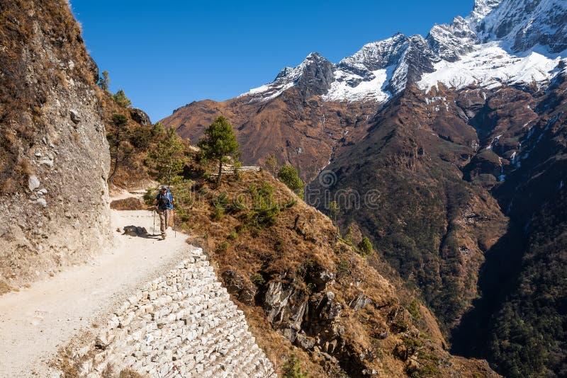 Trekker в долине Khumbu на пути к базовому лагерю Эвереста стоковое фото