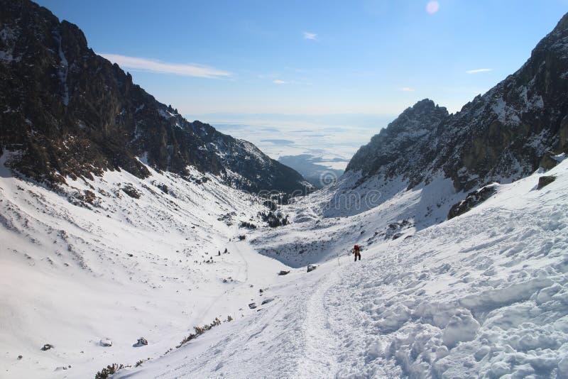 Trekker в долине Mala Studena в высоком Tatras стоковые фотографии rf