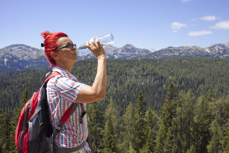 Trekker женщины выпивает высоко в горах стоковые изображения rf