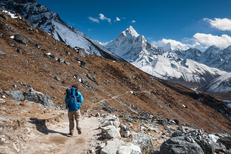 Trekker причаливая держателю Amadablan в долине Khumbu на пути к стоковая фотография rf