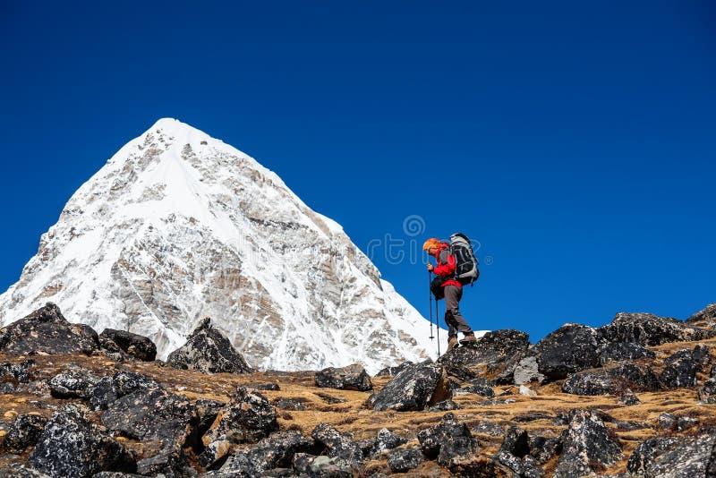 Trekker approaching PumoRi mountain in Khumbu valley on a way to royalty free stock image