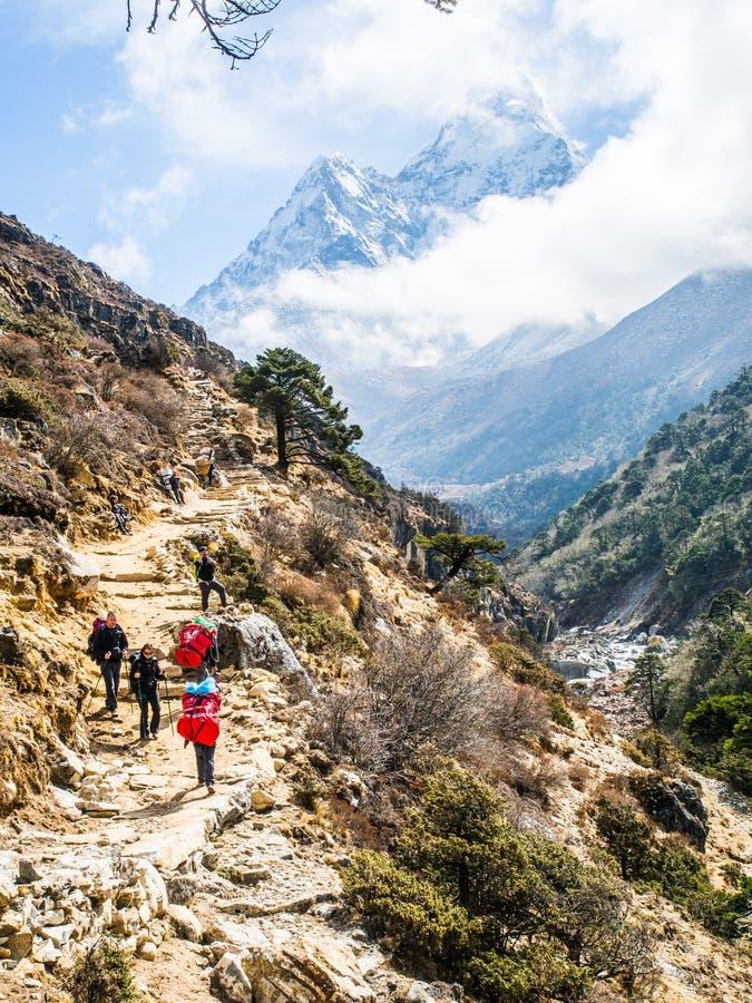 Trekker avec le beau fond de montagnes image stock