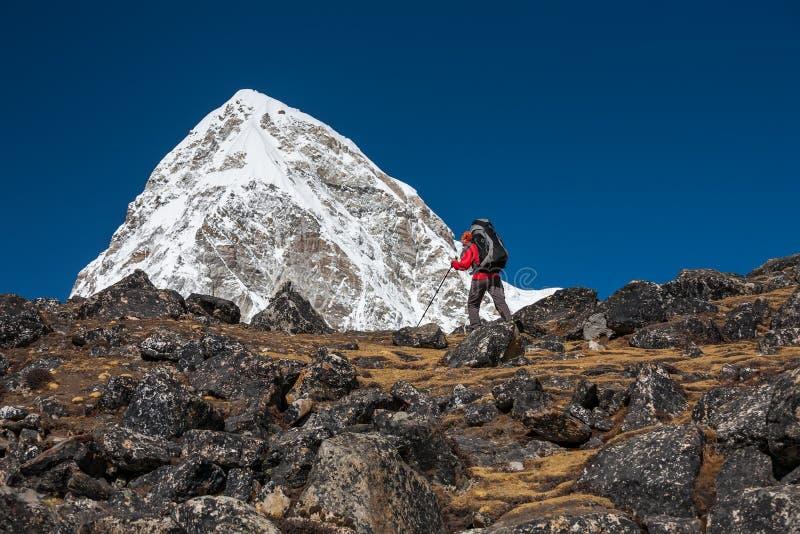 Trekker che si avvicina alla montagna di PumoRi in valle di Khumbu su un modo a fotografia stock libera da diritti