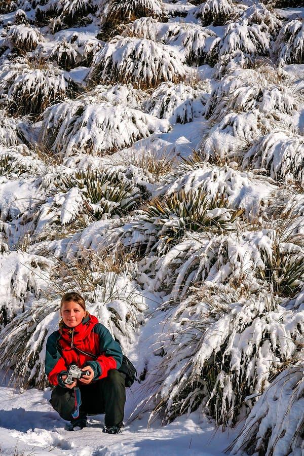 Trekker en una trayectoria a la cumbre del soporte Roy fotografía de archivo