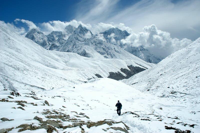 Trekker in the Himalaya royalty free stock photos