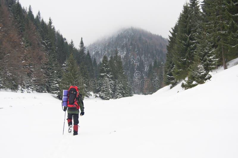 Trekker in sneeuw stock afbeelding