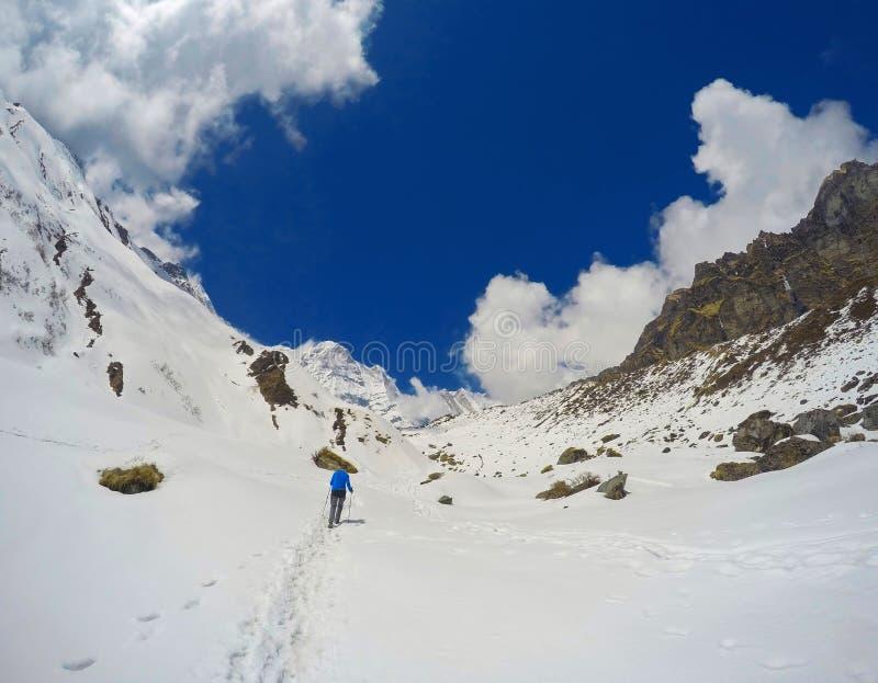 Trekker sulla traccia nelle montagne La ragazza di sport con lo zaino viaggia in Himalaya fotografia stock libera da diritti