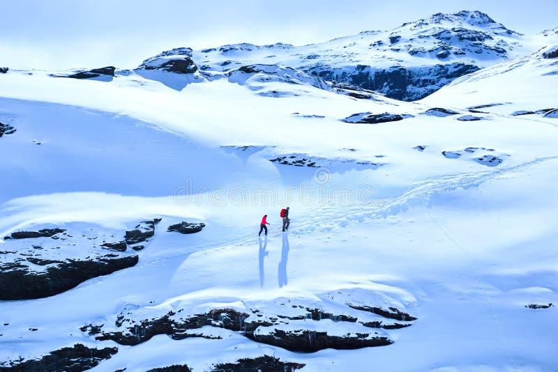 Trekkeren för två personer att gå upp att korsa i snöig berg i Norge kan in royaltyfri fotografi