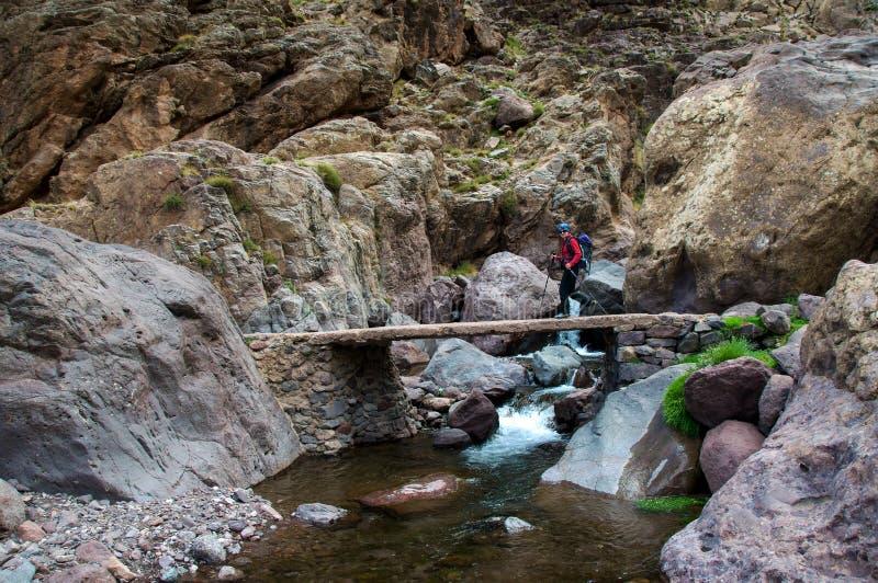 Trekkerkorsning bro royaltyfria bilder