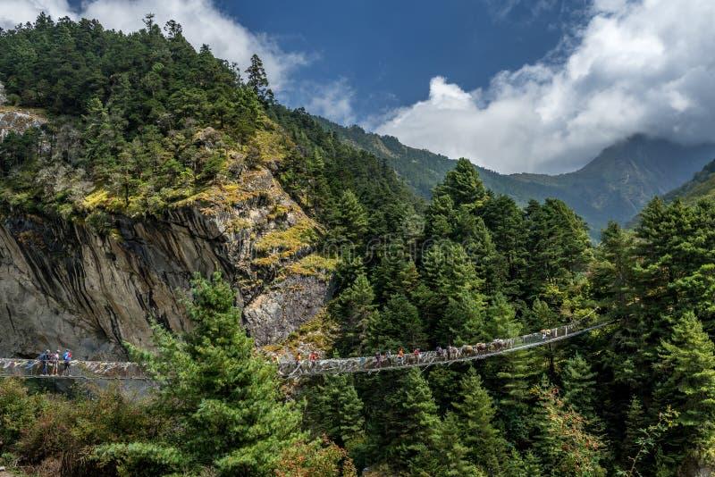 Trekkers που διασχίζει μια γέφυρα αναστολής στην περιοχή Everest & x28 Sagarma στοκ φωτογραφίες με δικαίωμα ελεύθερης χρήσης