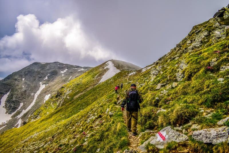 Trekkers auf Gebirgsweg lizenzfreie stockfotos