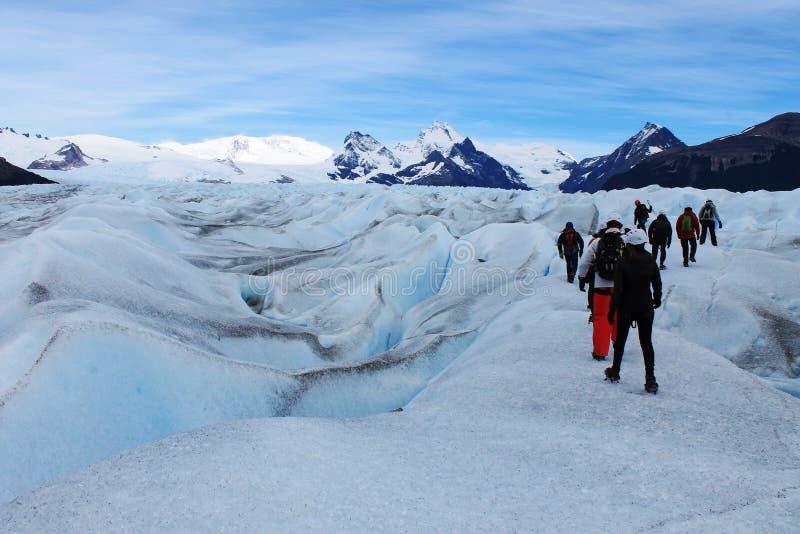 Trekking большого ледника Perito Moreno льда популярный туристский, Calafate Аргентина стоковая фотография rf