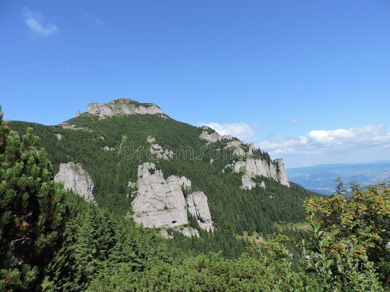 Trekking в горах Ceahlau стоковое изображение rf