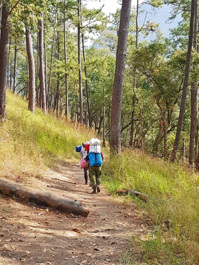 Trekking/гид горы cum портер стоковое изображение rf