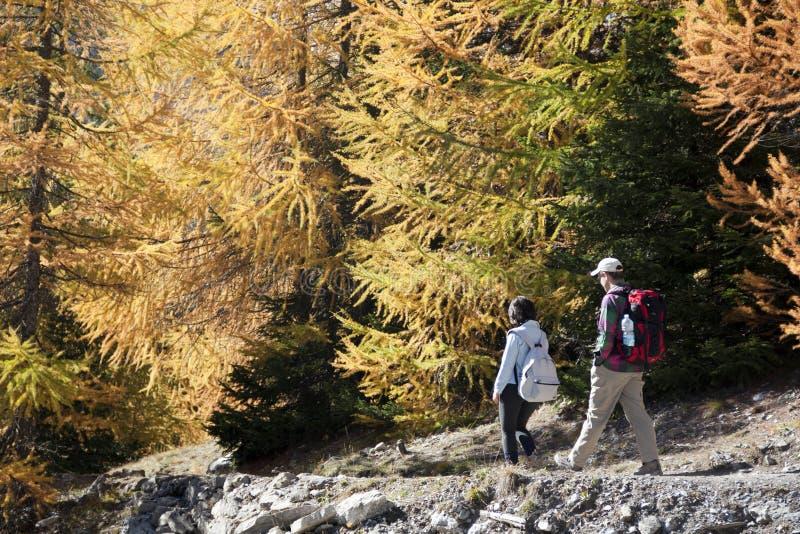 Trekking stock fotografie
