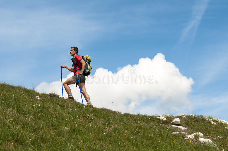 Trekking in the Alps royalty free stock photo