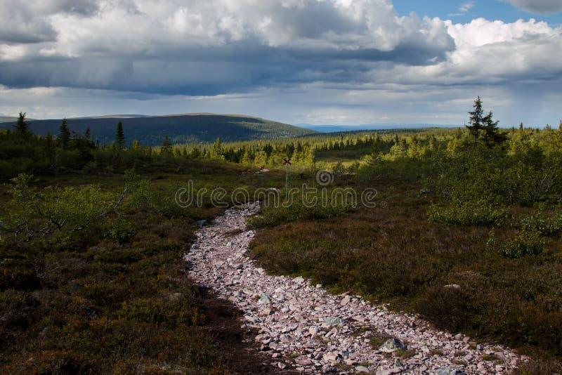 Trekking bana i nordliga Sverige arkivfoton