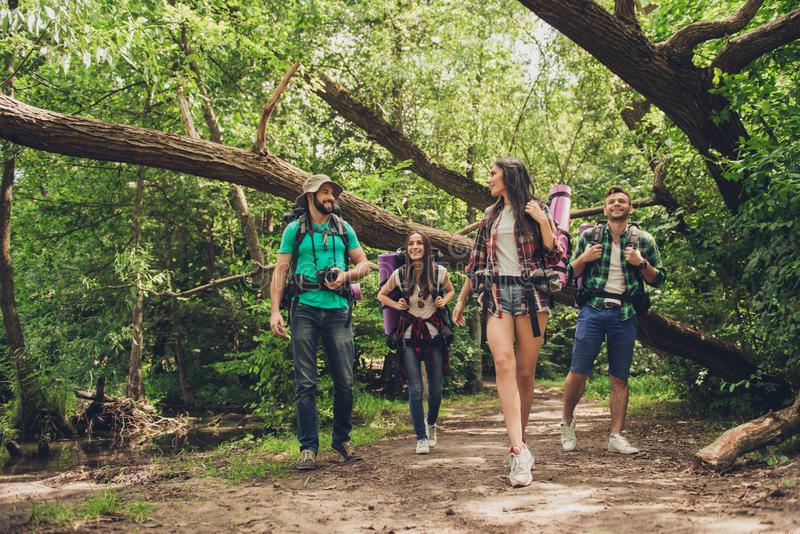 Trekking, camping and wild life concept. Two couples of friends are walking in the sunny spring woods, talking and laughing, all a stock photos