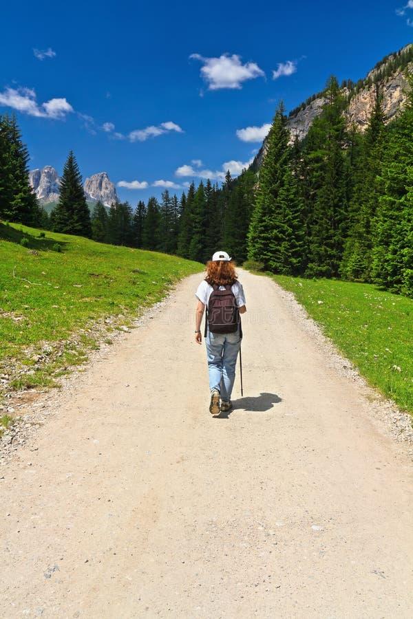 Trekking in Contrin-Vallei stock afbeelding
