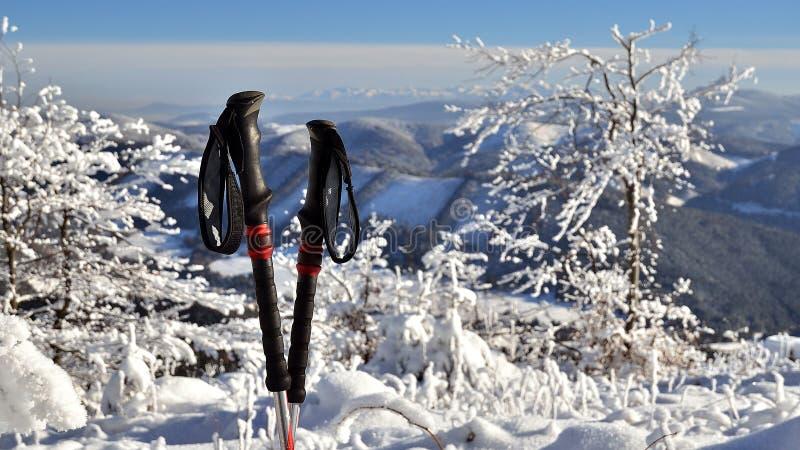 Trekking lizenzfreies stockfoto