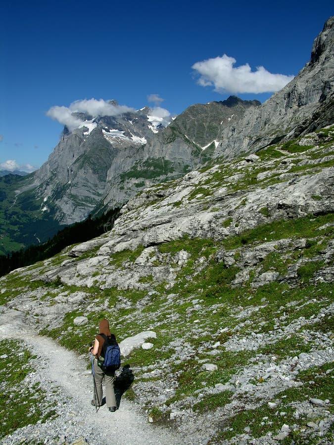 Trekking in de Alpen van Zwitserland stock afbeeldingen