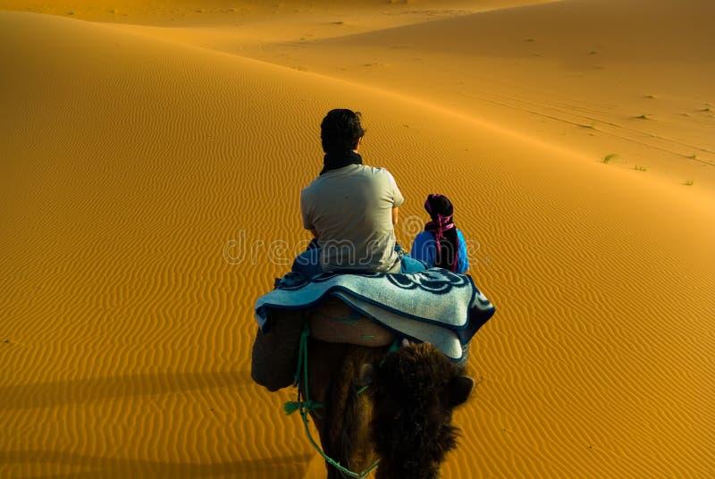Trekking de chameau, Maroc images libres de droits