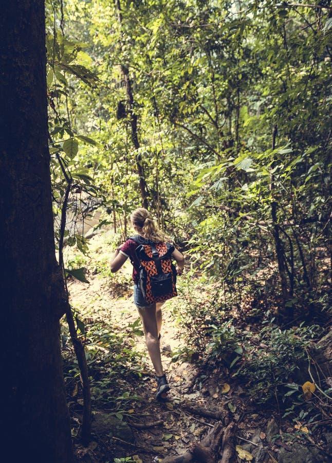 Trekking de femme dans la forêt images stock