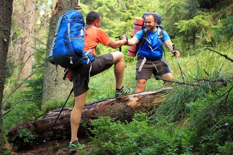 Trekking de randonneur dans les montagnes photos stock