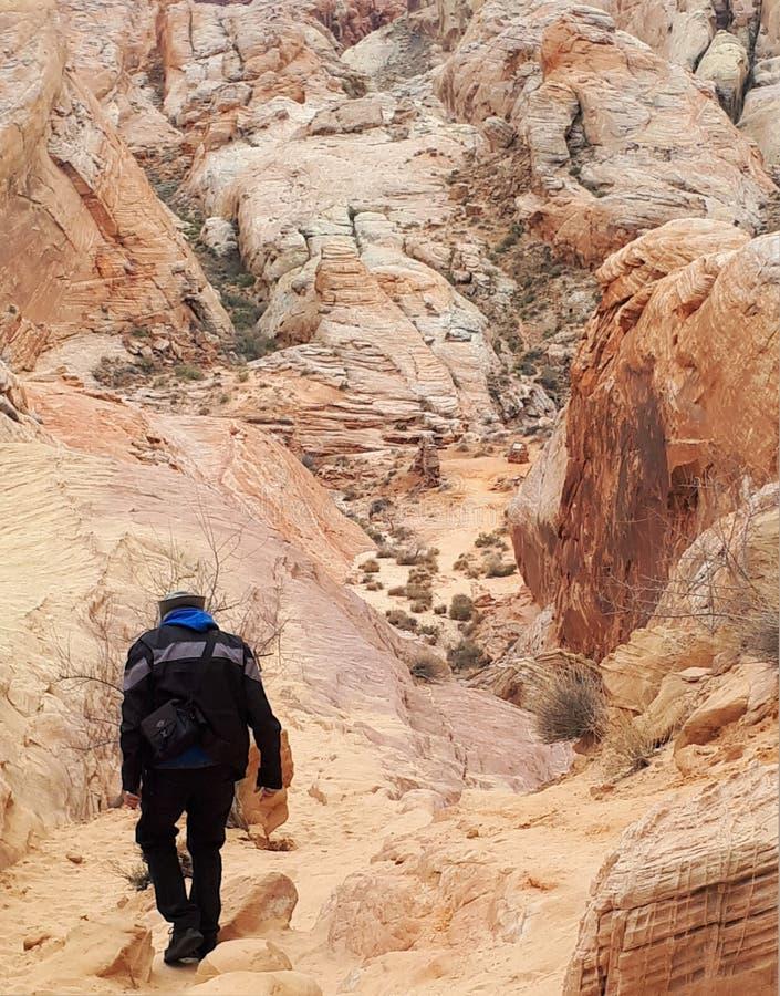 Trekking dell'uomo intorno a roccia bianca in valle del parco di stato del fuoco fotografia stock libera da diritti