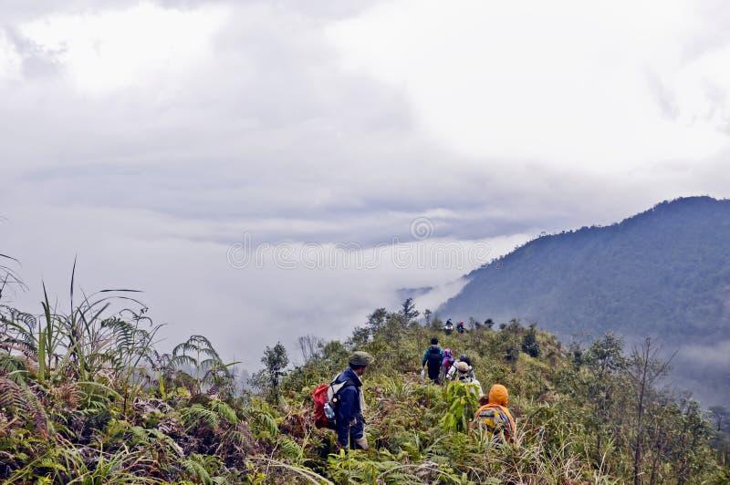 Trekking droga na KiQuanSan górze, YenBai, Wietnam obrazy royalty free