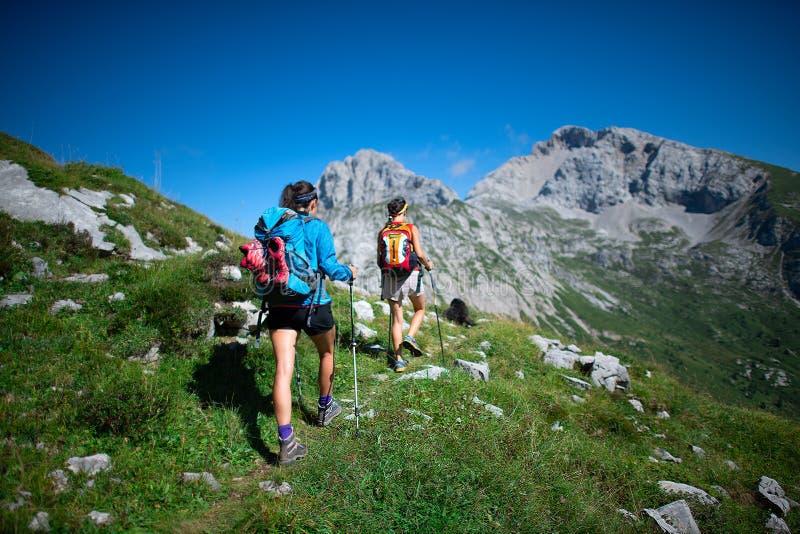 Trekking dwa coworkers pracuje w górach na dniu wolnym obraz royalty free