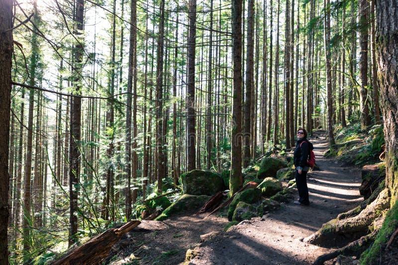 Trekking em Seattle Washington Rattlesnake Ledge Trail fotos de stock