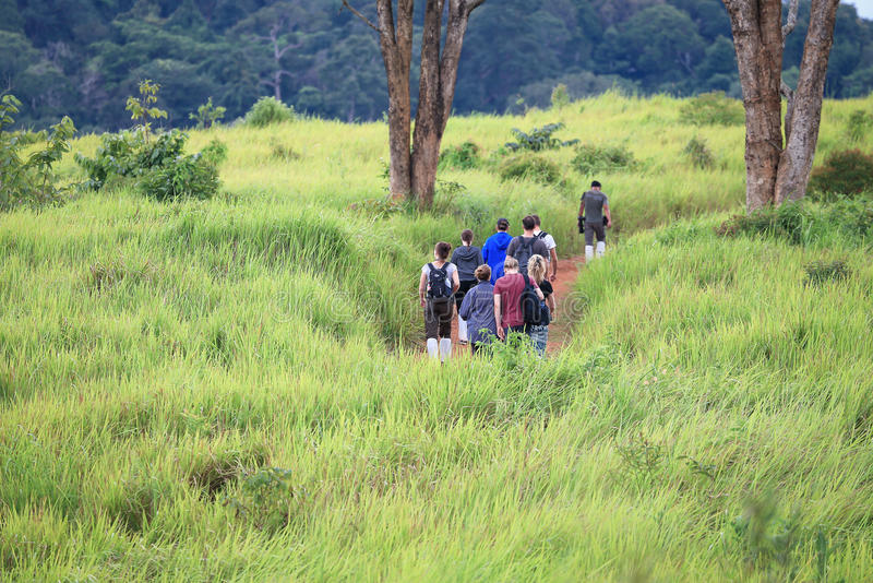 Trekking em Tailândia fotografia de stock royalty free