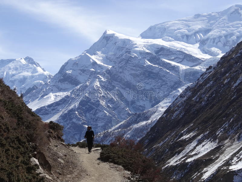 Trekking at the Foot of Machapuchare royalty free stock image